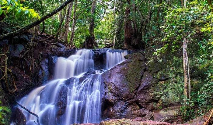 Karura Forest Reserve