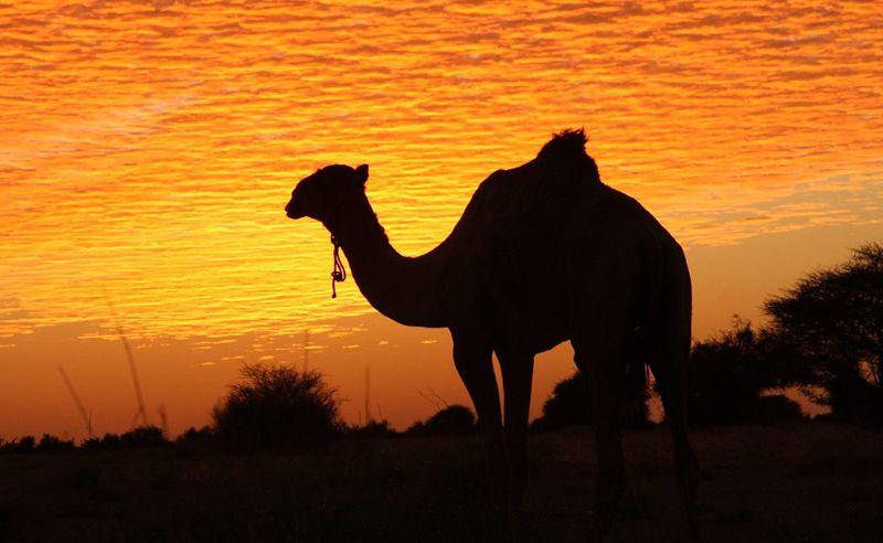 Deserts in Kenya