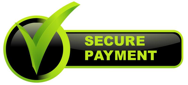 Secure Payment Portals